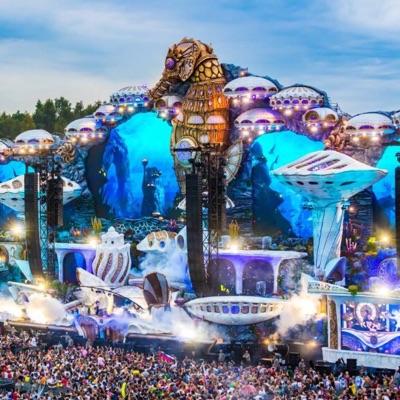 Tomorrowland Music Festival (Fans) on Viber